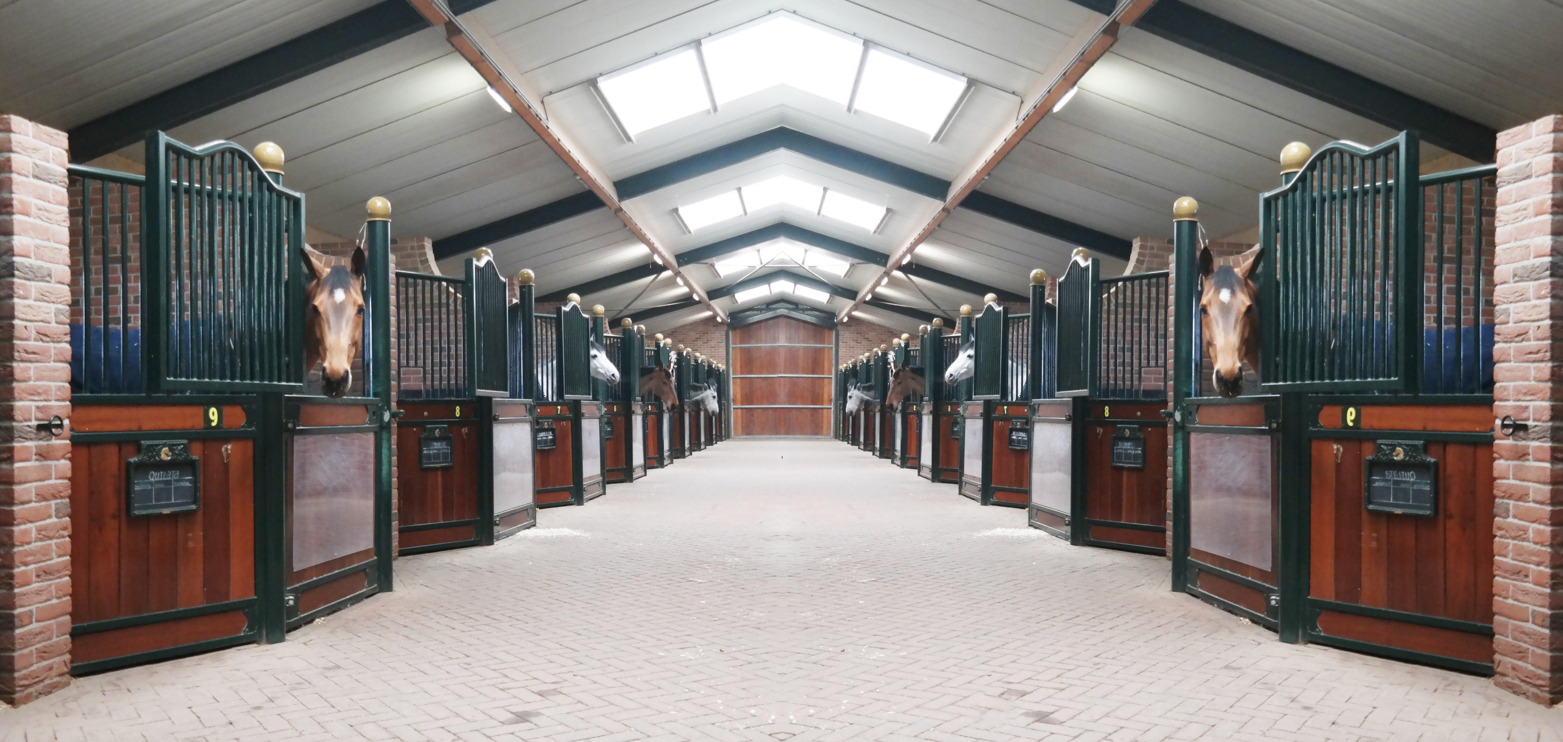 Luxe paardenbox op maat gemaakt door heass for Te koop woning met paardenstallen